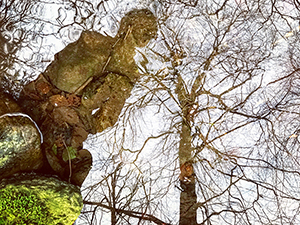 Sam Beresford Irish Landscape and Nature Photography