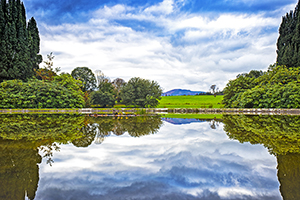 Autumn Reflecting Curraghmore Gardens