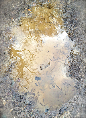 Ireland in a puddle