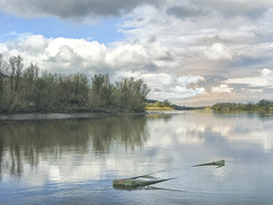 Sunken boat on river suir